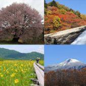 片品の四季